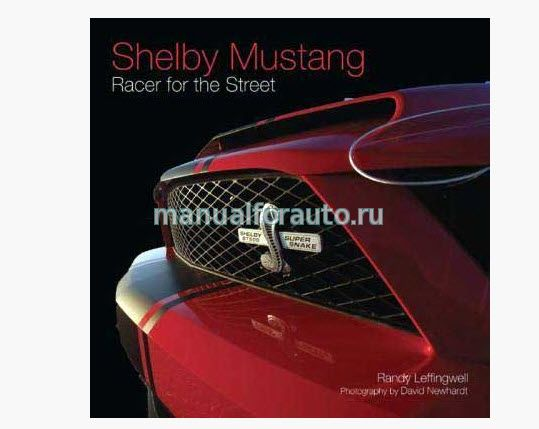 Shelby Mustang racer for the street